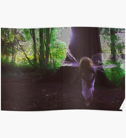 Curious Faerie Poster