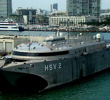 The Miami Pier: Proud vessel HSV  by Isa Rodriguez