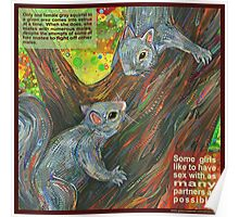 Ladylike behavior (Gray squirrel) Poster