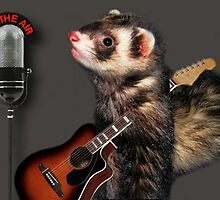 LITTLE FERRET WITH GUITAR ON THE AIR COMING TO LIVE ON R.B.SING LITTLE FERRET SING.. PICTURE AND OR CARD ECT. by ✿✿ Bonita ✿✿ ђєℓℓσ