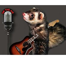 LITTLE FERRET WITH GUITAR ON THE AIR COMING TO LIVE ON R.B.SING LITTLE FERRET SING.. PICTURE AND OR CARD ECT. Photographic Print