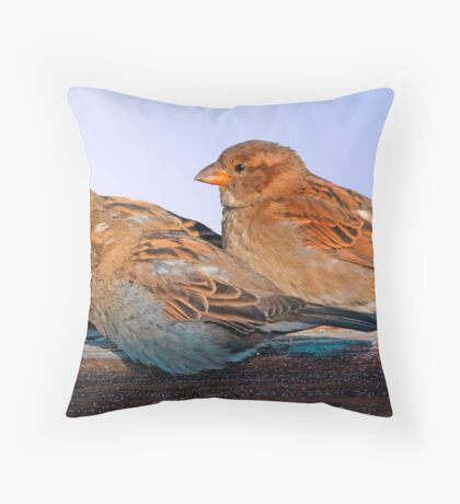 Three for Dinner Throw Pillow