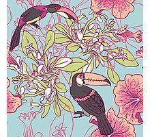 Seamless floral background with petunia toucan Photographic Print