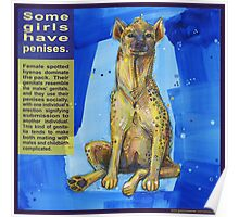 She wears the pants (Spotted hyena) Poster