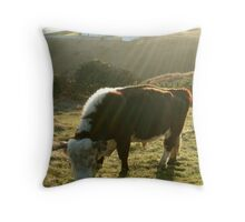 Hereford Cliff Cow  Throw Pillow