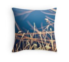 Reasons Unknown Throw Pillow