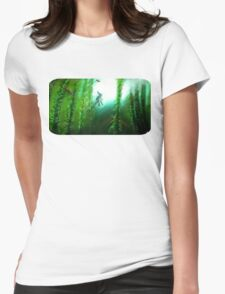 Link's Storm Womens Fitted T-Shirt