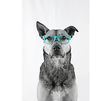 Sophisticated in Teal Photographic Print