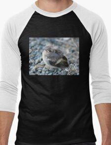 Please Don't Step On Me! - Chaffinch - NZ Men's Baseball ¾ T-Shirt