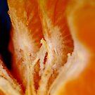 A Tangerine... juicy ready to munch! by Larry Llewellyn