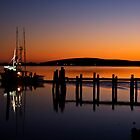 Bodega Harbor by Mike Stone