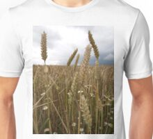 Wheat in Somerset-Broadway Unisex T-Shirt