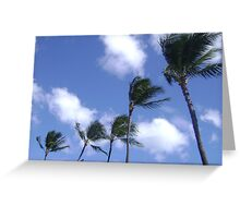 Palm trees in the wind. Greeting Card