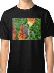 These Pokers Are Sweet - Female Bellbird - NZ Classic T-Shirt