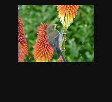 These Pokers Are Sweet - Female Bellbird - NZ Hoodie