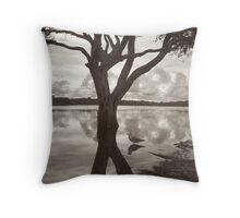 lake ainsworth & seagull Throw Pillow