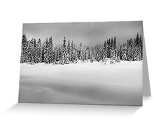 Before the Snowstorm Greeting Card