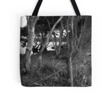 lake ainsworth pathway by the fence Tote Bag