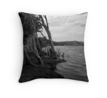 lake ainsworth afternoon light Throw Pillow