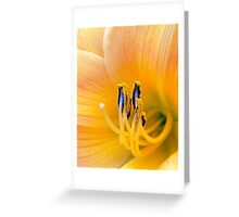 Yellow Day Lily macro #29 Greeting Card