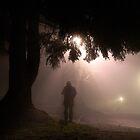 stranger in the fog by Bill vander Sluys