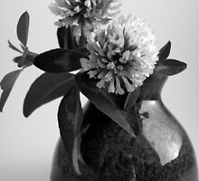 Red Clover in B&W by Karen Eaton