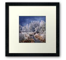 Cold Serenity Framed Print