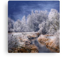 Cold Serenity Canvas Print