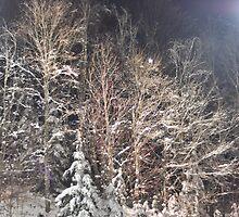 winter renaissance by Alexandr Grichenko