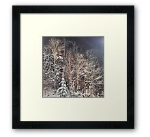 winter renaissance Framed Print