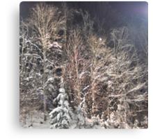 winter renaissance Canvas Print