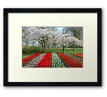 Blooming Keukenhof Framed Print