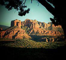 Sedona Valley, Arizona by Darlene Wilson
