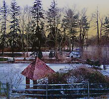 Wintry scene by Judi Taylor
