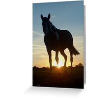 equus Greeting Card