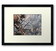Filigree Framed Print