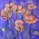 Californian Poppies by Alexandra Felgate