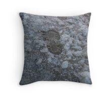 Slush Throw Pillow