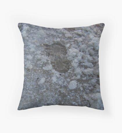 Slush Throw Pillow