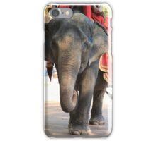 Asian Elephant iPhone Case/Skin