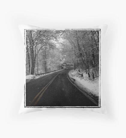 Ashley's Road Throw Pillow