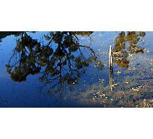Afternoon Reflections - Lake St Clair - Tasmania Photographic Print
