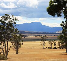 Ben Lomond from Epping Forest - Tasmania, Australia by Ruth Durose