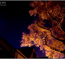 Bathed in Moonlight  by solstone