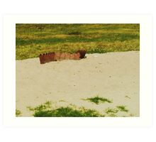 The Crown Of The Land Art Print