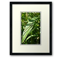 Dragons See All Framed Print