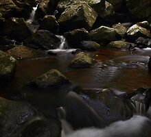 Curtis Falls, Mt. Tamborine, QLD by David James