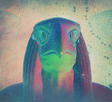 Egyptian God Horus by psychastro