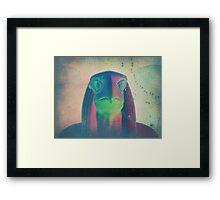 Egyptian God Horus Framed Print