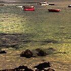 Iona bay by brian a smith